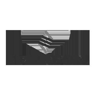 Emerson_300