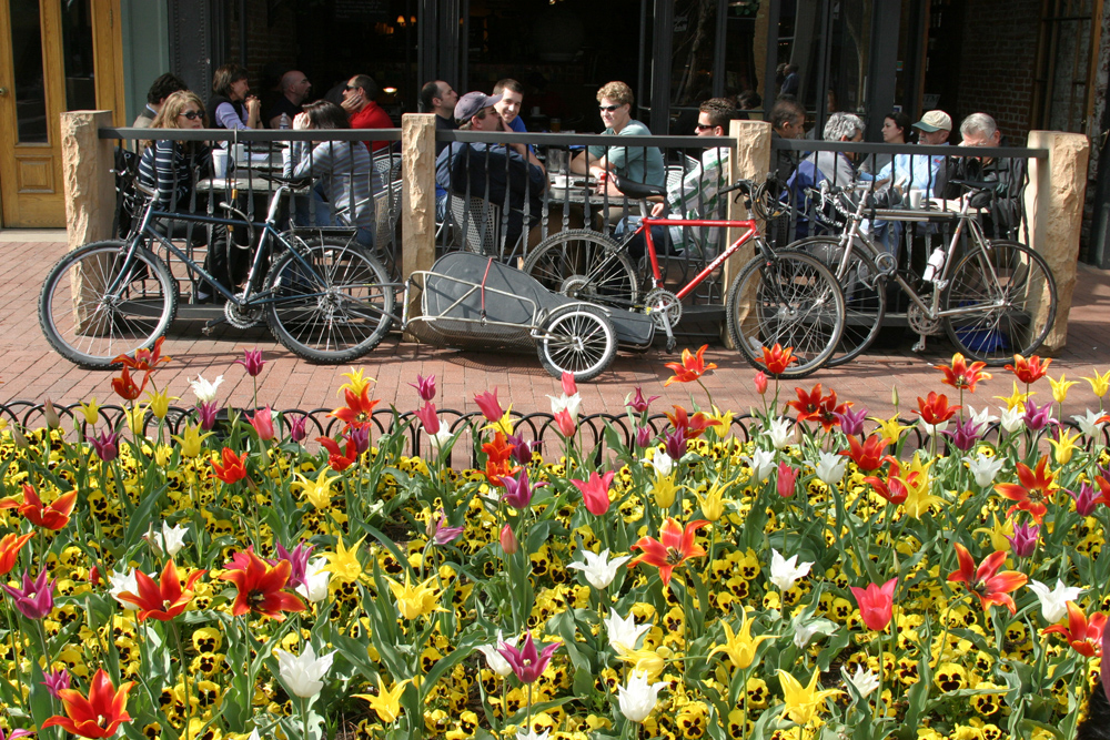 In Spring the locals are out and about biking around beautiful Boulder. Photo Credit: Downtown Boulder (DBI.org)